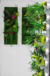 D-Cover labo à végétaux