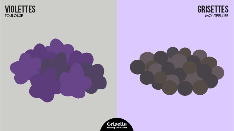 Toulouse vs Montpellier - Violettes vs Grisettes