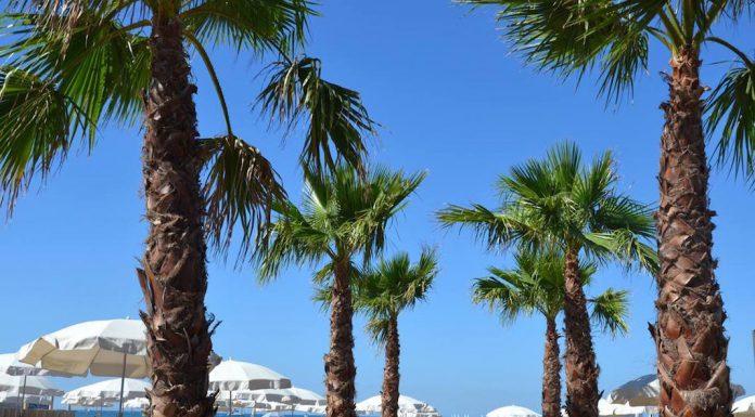 Les Arts Beach