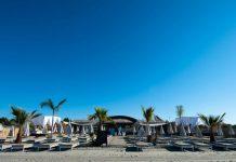 Palm Beach by Les Vagues