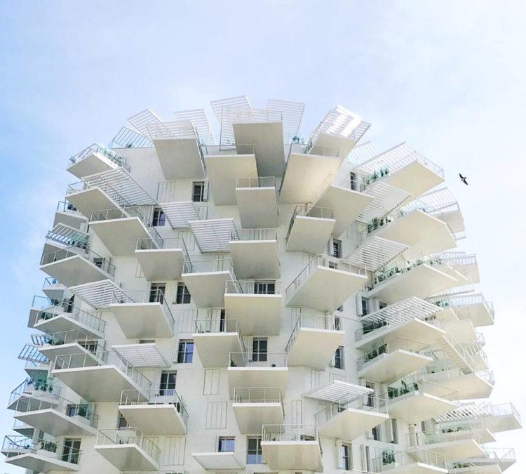 rooftop à Montpellier L'Arbre Blanc