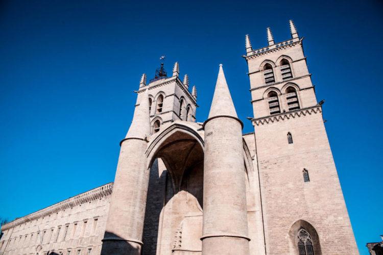 Écusson Montpellier Cathédrale Saint-Pierre