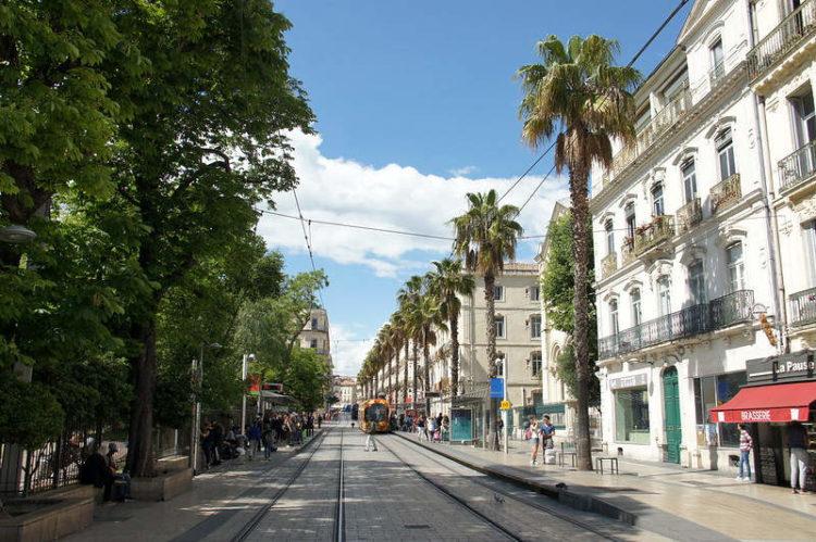 Écusson Montpellier Rue Maguelone