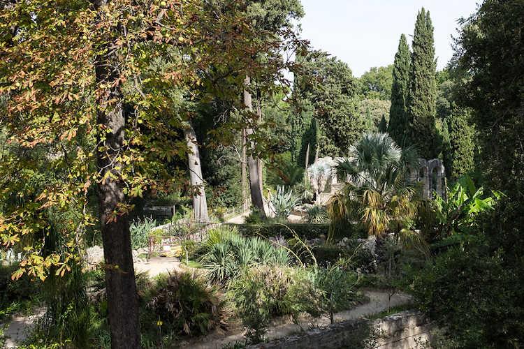 Le Jardin Des Plantes De Montpellier Classe Monument Historique Grizette